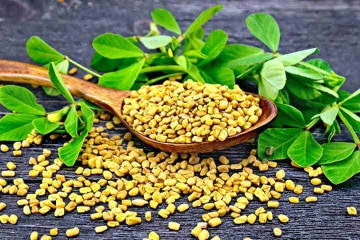 fenugreek seeds for anaemia, herbs for low iron, herbs for kidney disease, herbs for CKD, herbs to improve renal function