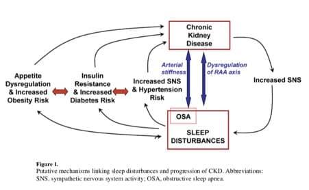 Sleep and CKD