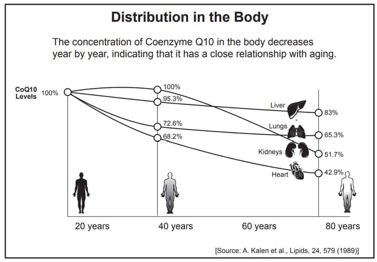 Distribution to body