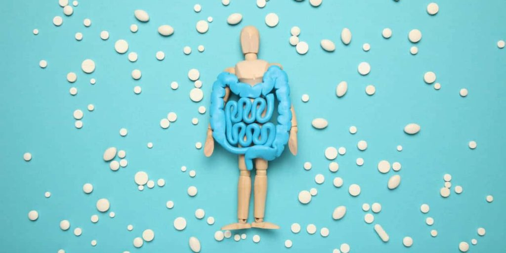 MICROBIOME AND kidney and renal disease and function