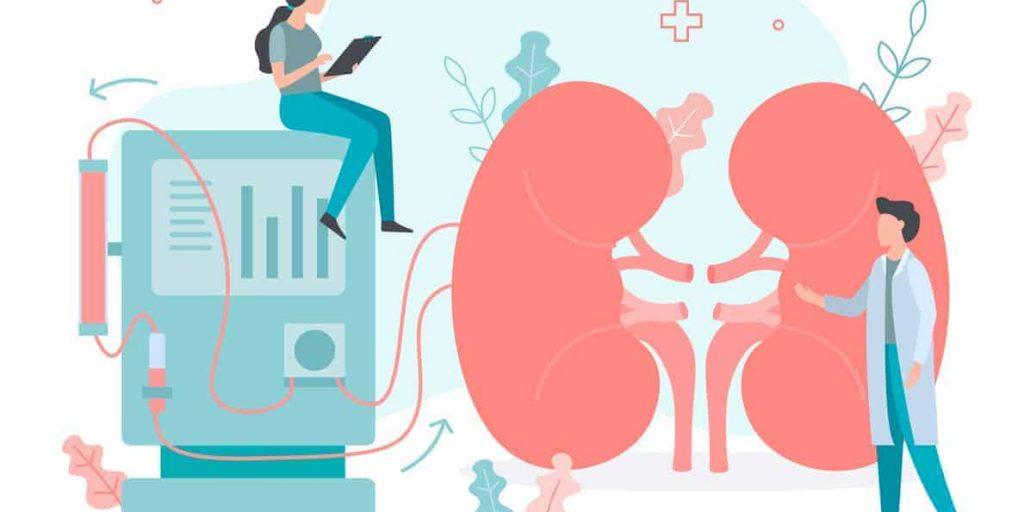 Hemodialysis Diet, what to eat on dialysis, kidney dialysis, diet CKD dialysis