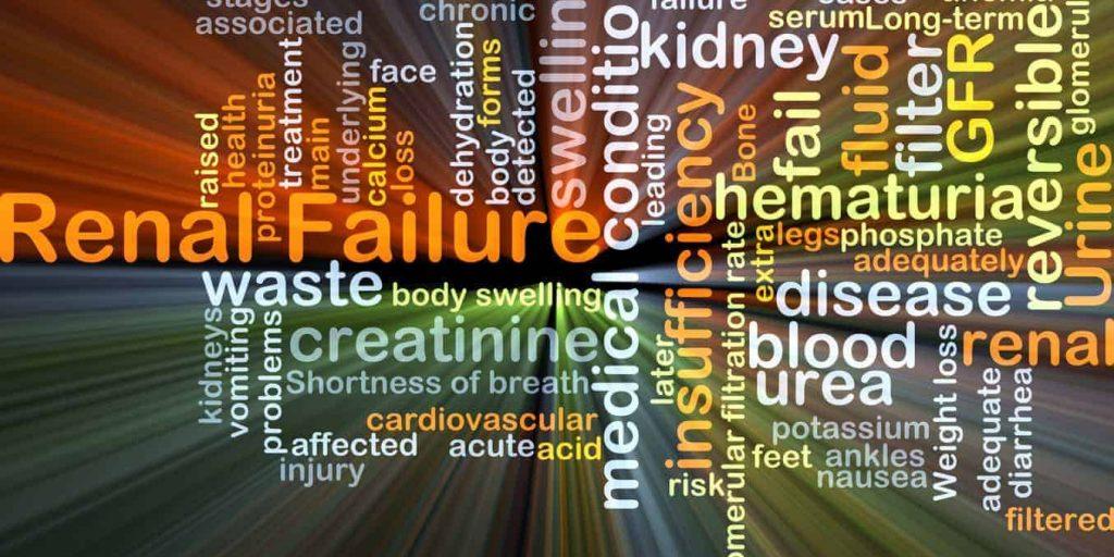 causes of kidney disease, causes of renal failure, causes of CKD, diabetes as a cuase of CKD