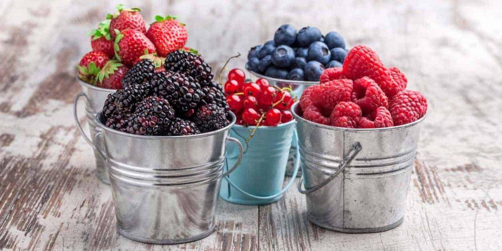 berries, kidney disease, cholesterol, anti oxidants