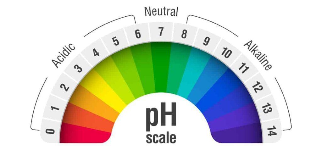 alkaline diet, Kidney disease, pH kidney, Alkaline, diet, eating, Healthy, Renal diet, Kidney health
