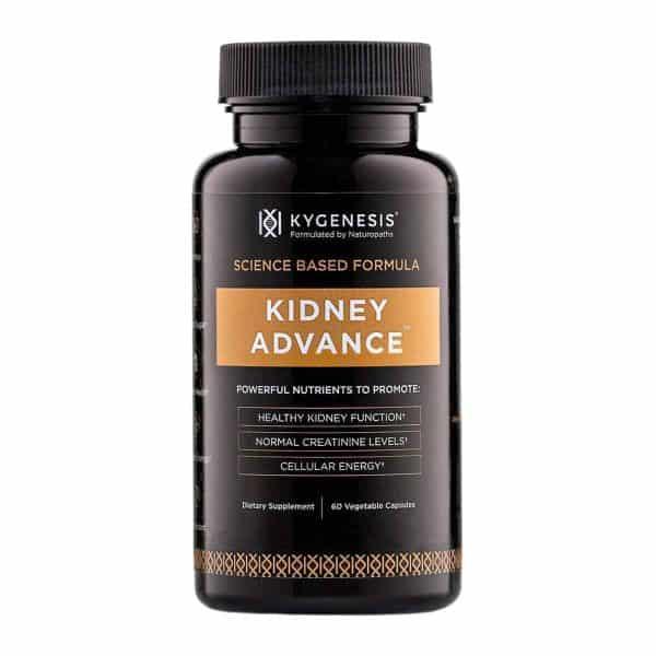 Kygenesis Kidney Advance