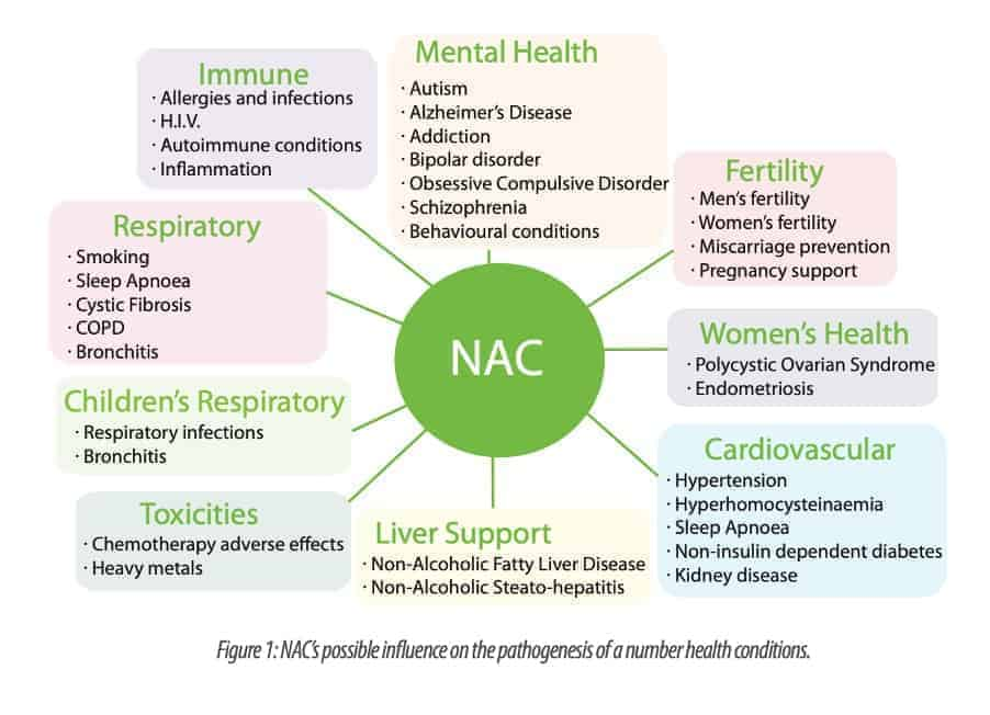 NAC in kidney disease, preventing renal damage, Kidney cells are particularly vulnerable to damage which may come from things in the environment, or from within our own body. So today I thought I'd write about the nutritional supplement N-acetyl cysteine or NAC that has been shown to protect the kidneys from damage. What is N-acetyl cysteine? N-acetylcysteine or NAC is a nutritional supplement that comes from the amino acid cysteine which can be found in most high protein foods and is also produced endogenously by the body. NAC was introduced in the 1960s as a mucolytic drug used to thin mucous in conditions like cystic fibrosis. After that it was discovered that NAC is an effective antioxidant that increases the production of glutathione in the body prompting its use as an antidote to acetaminophen/paracetamol overdose and toxicity to protect the liver and kidneys from damage.