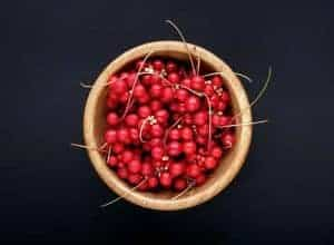 Schisandra berries for CKD