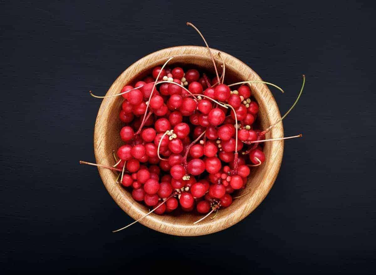 Schisandra berries for CKD